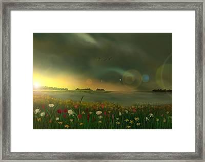 Spring Serenity Framed Print by Steve Hermann