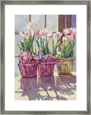 Spring Shadows Framed Print