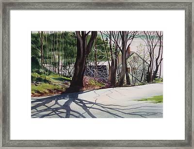 Spring Shadows Framed Print by Karol Wyckoff