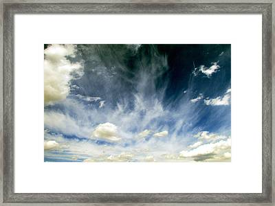 Spring Sky Framed Print by Andrea Dale