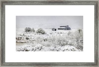 Spring Snow Storm Framed Print