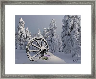 Spring Snowfall Framed Print