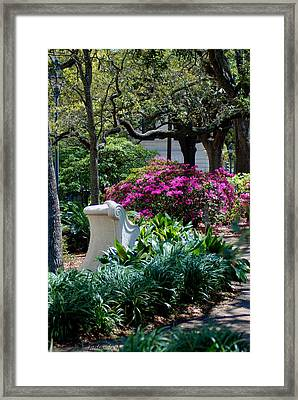 Spring Solitude Framed Print