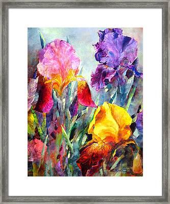 Spring Spectrum Framed Print