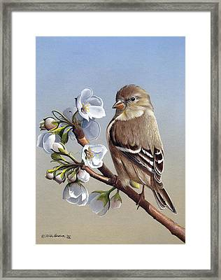 Framed Print featuring the painting Spring Splendor by Mike Brown