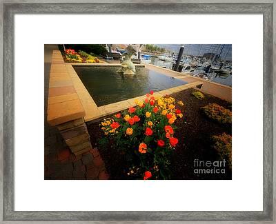 Spring Sprung 2 Framed Print by Robert McCubbin