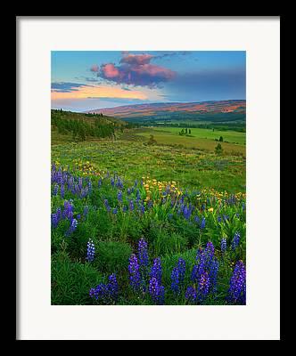 Central Washington Framed Prints
