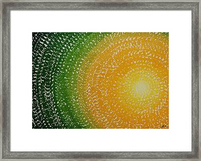 Spring Sun Original Painting Framed Print by Sol Luckman