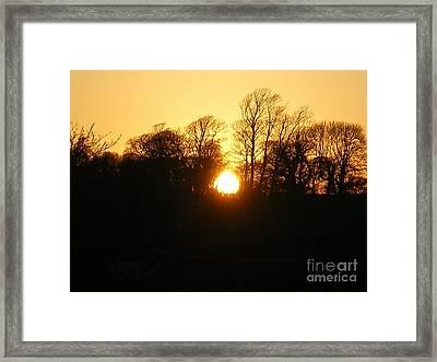 Spring Sunset. Framed Print by Ann Fellows