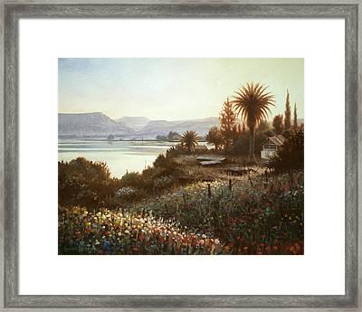 Spring Sunset  Northern Galilee Framed Print by Graham Braddock