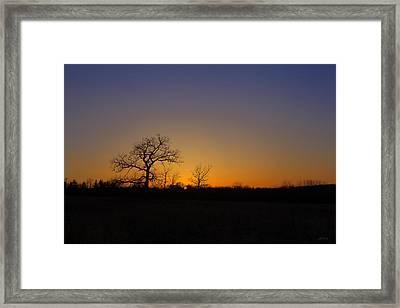 Spring Sunset Pops Through Trees Framed Print by Ed Cilley