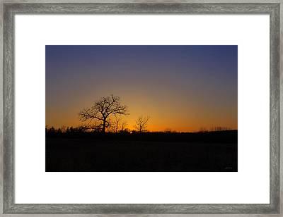 Spring Sunset Pops Through Trees Framed Print