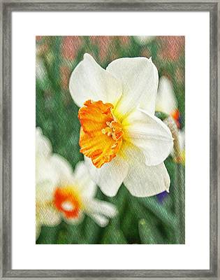 Spring Texture Framed Print by Cathie Tyler