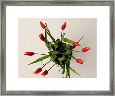 Spring Thaw Framed Print by Luke Moore