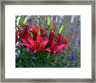 Spring Things Framed Print by Sue Rosen