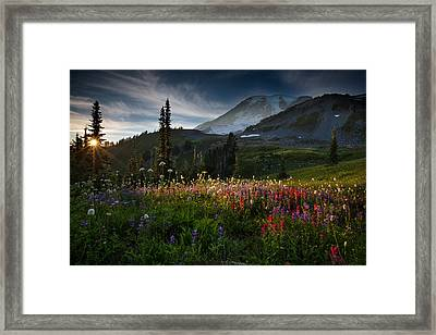 Spring Time At Mt. Rainier Washington Framed Print by Larry Marshall