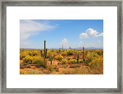 Spring Time On The Rolls - Arizona. Framed Print