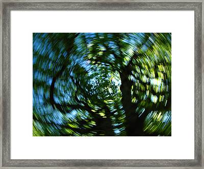 Spring Tree Carousel Framed Print by Juergen Roth