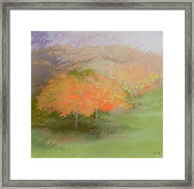 Spring Trees Framed Print by Bruce Richardson