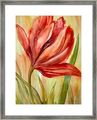Spring Tulip Framed Print