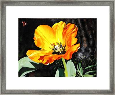 Framed Print featuring the painting Spring Tulip by Glenn Beasley