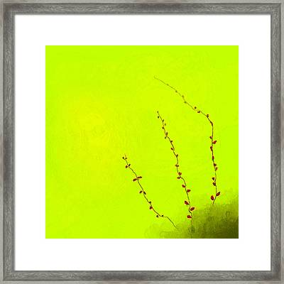 Spring Twigs Framed Print