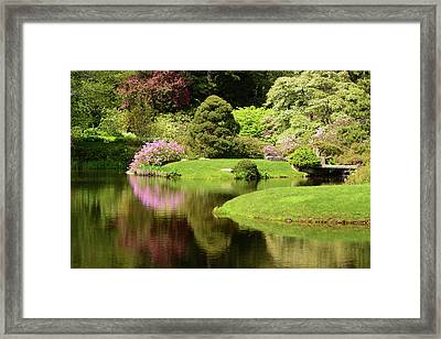 Spring View Of Azaleas In A Japanese Framed Print