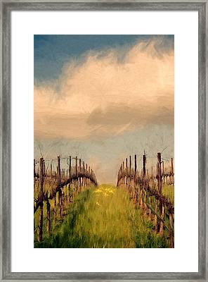 Spring Vineyard Framed Print by John K Woodruff