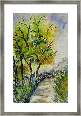 Spring Walk Framed Print by Catherine Arcolio