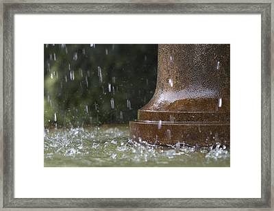 Framed Print featuring the photograph Spring Water Fountain by Colleen Williams