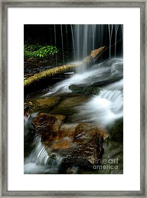 Spring Waterfall Monongahela National Forest Framed Print by Thomas R Fletcher