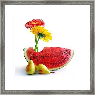 Spring Watermelon Framed Print by Carlos Caetano