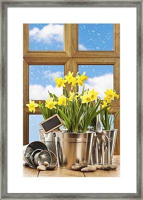 Spring Window Framed Print by Amanda Elwell