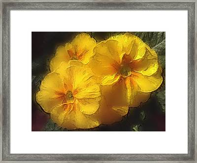 Framed Print featuring the photograph Springflower 5 by Gabriella Weninger - David
