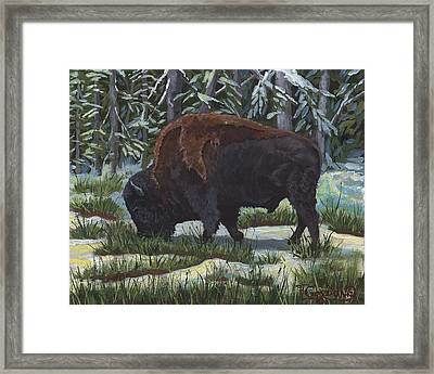 Spring's A Coming Framed Print by Timithy L Gordon