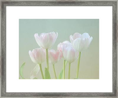 Spring's Pastels Framed Print