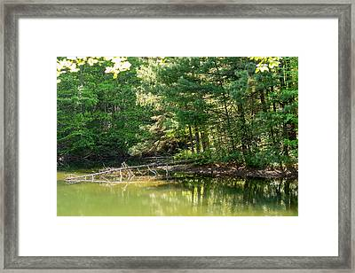 Springtime At Crystal Lake Framed Print by John Carroll
