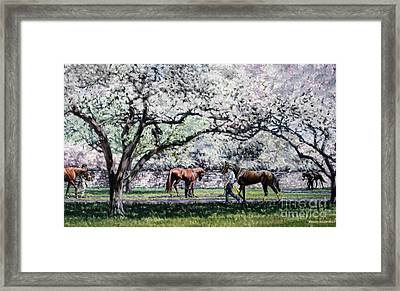 Springtime At Keeneland Framed Print by Thomas Allen Pauly