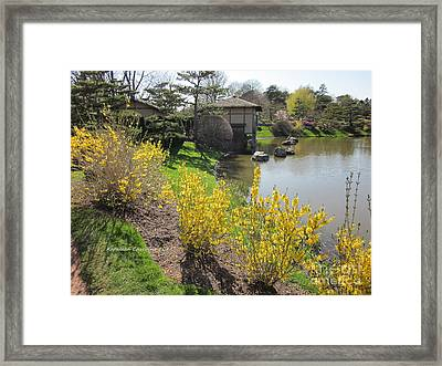 Springtime At The Japanese Gardens Framed Print