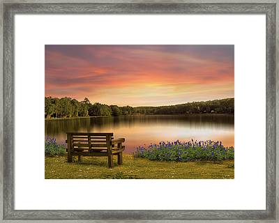 Springtime At The Lake Framed Print