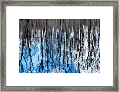 Springtime Beaver Pond Reflections 1 In Gatineau Park Quebec. Framed Print