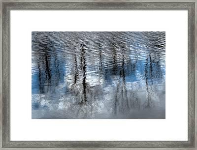 Springtime Beaver Pond Reflections 2 In Gatineau Park Quebec. Framed Print