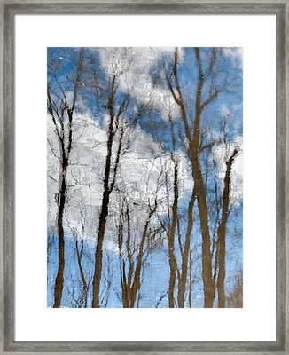 Springtime Beaver Pond Reflections 3 In Gatineau Park Quebec. Framed Print