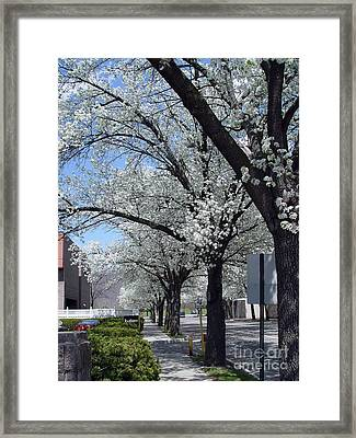 Framed Print featuring the photograph Springtime Corning Ny 2 by Tom Doud