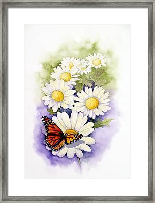 Springtime Daisies  Framed Print
