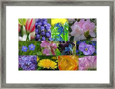 Springtime Entertainment Framed Print