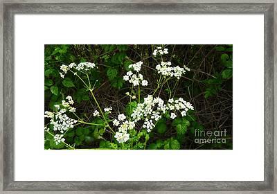 Springtime Flowers Framed Print by Julie Koretz