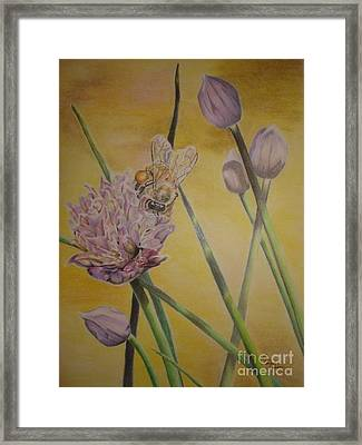 Springtime Glow Framed Print