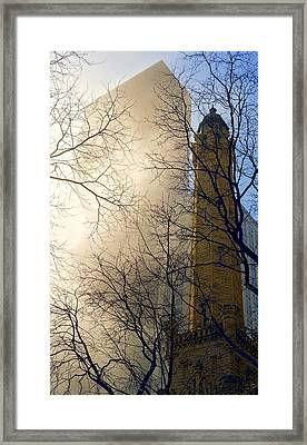 Framed Print featuring the photograph Springtime In Chicago by Steven Sparks