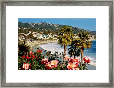 Springtime In Laguna Framed Print by Cliff Wassmann